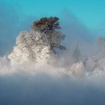 national-geographic-moments-12