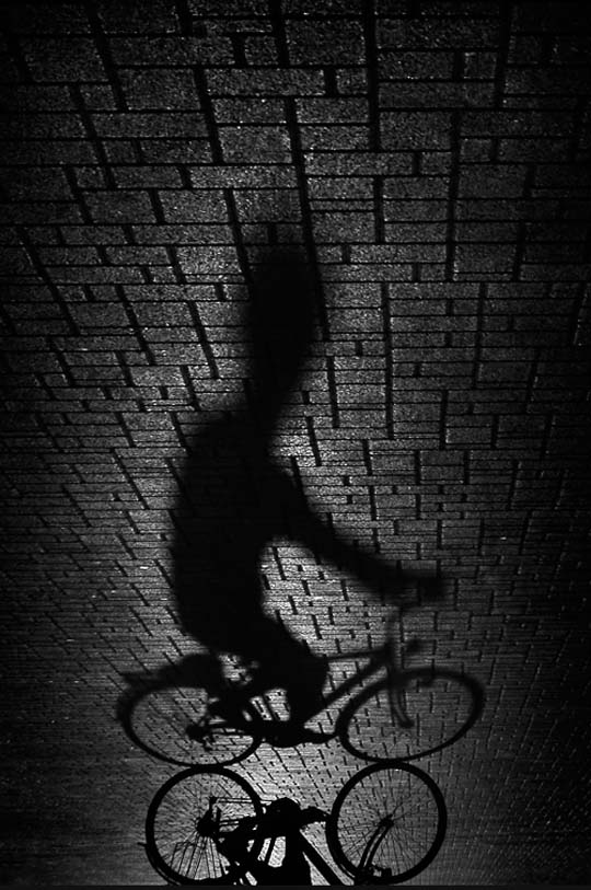 Beautiful Shadow Photography