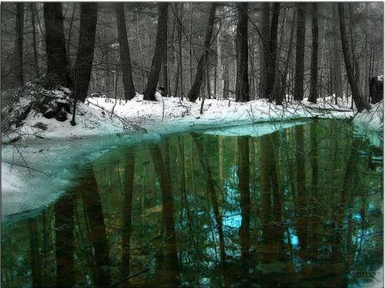 201 25 Beautiful Examples of Selective Color Photos