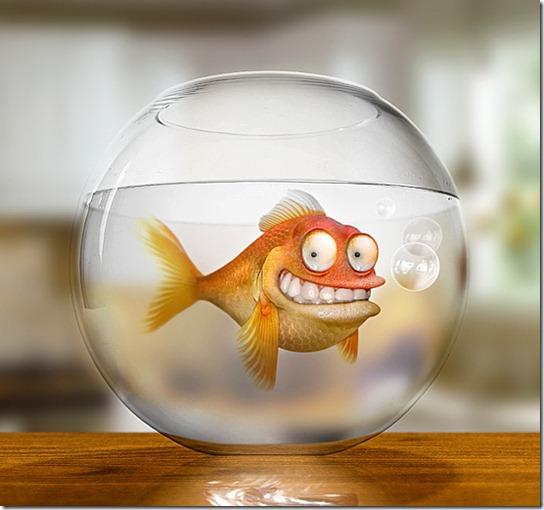 http://thejagman22.deviantart.com/art/Klaus-the-German-Goldfish-143360894