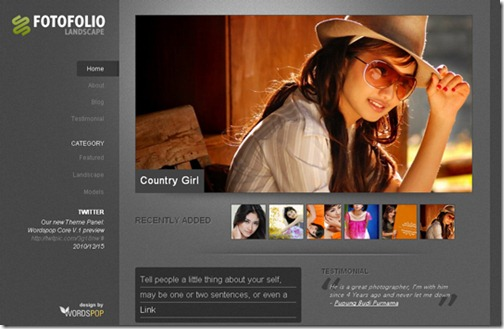 1 premium wordpress themes 2010
