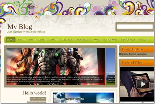2 premium wordpress themes 2010