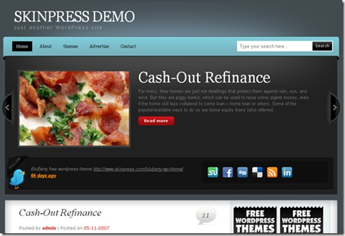 3 premium wordpress themes 2010