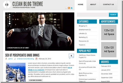 4 premium wordpress themes 2010