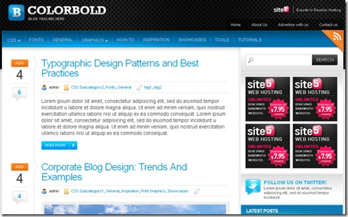 6 premium wordpress themes 2010