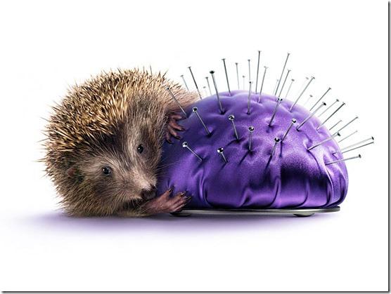Hedgehog-l