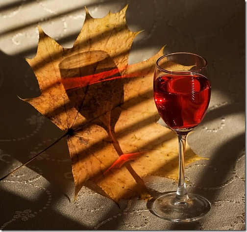 glass-photography-11