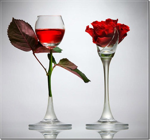 glass-photography-19