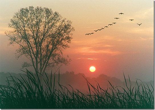 sunrise-photography-14