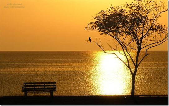 sunrise-photography-8