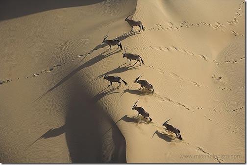 aerialphotography19