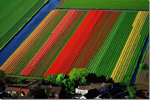 aerialphotography32
