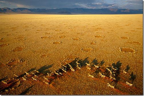 aerialphotography9