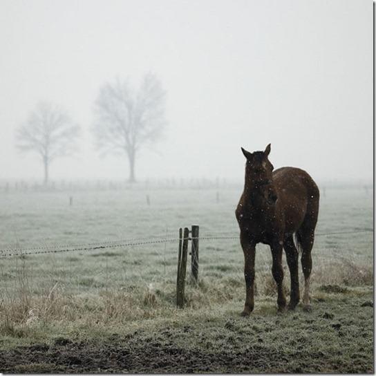 alone-sad-photos-9