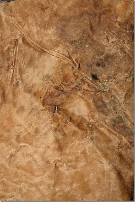 leather-texture-26