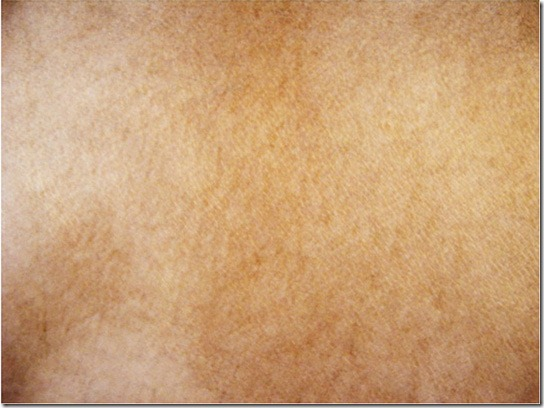 leather-texture-40