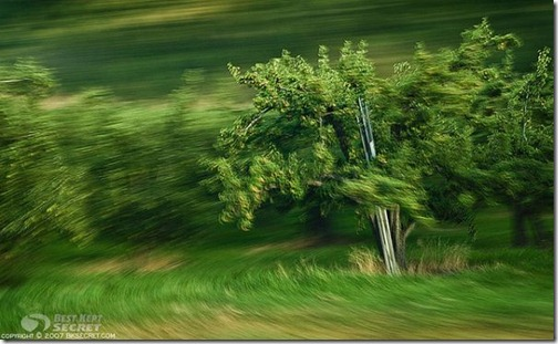 motion-blur-photos-10