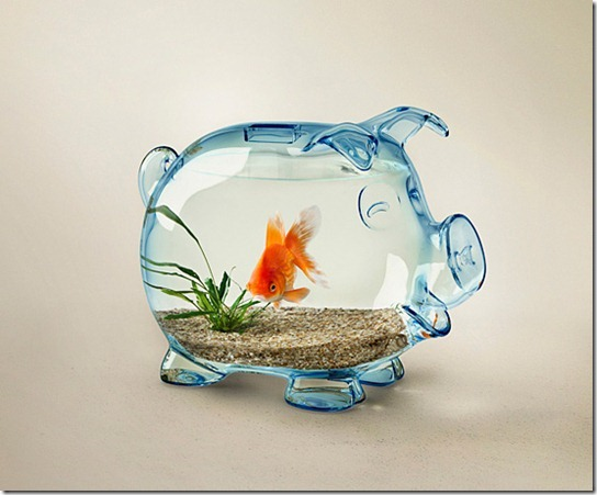 A-new-life-for-piggy-bank