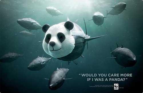 Effective Ideas of Public Interest Ads