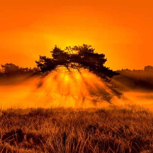 Beautiful Photos From Around The World
