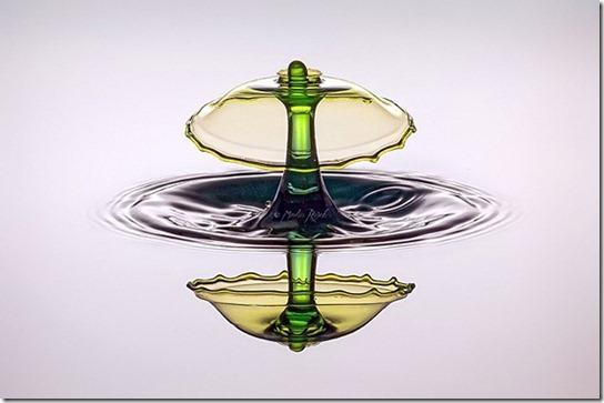 Green-Basic-l