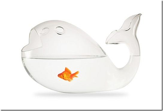 Inception-Fish-Bowl-l