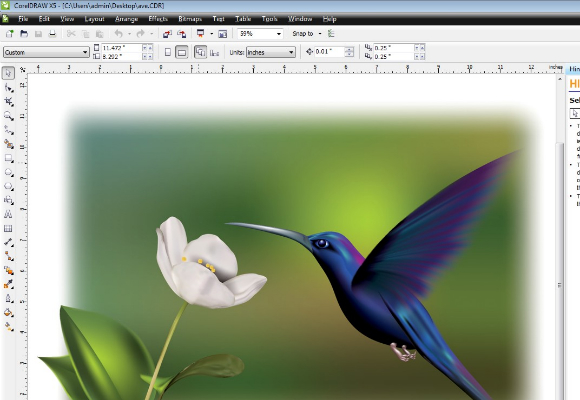 12 Great Alternatives To Adobe Illustrator For Graphic