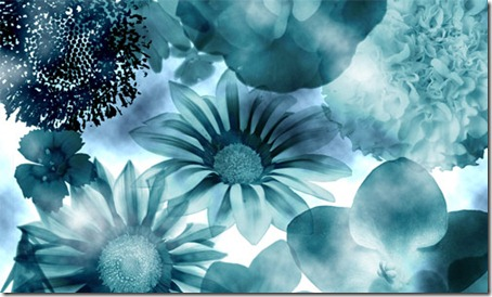 floral-photoshop-brushes-13