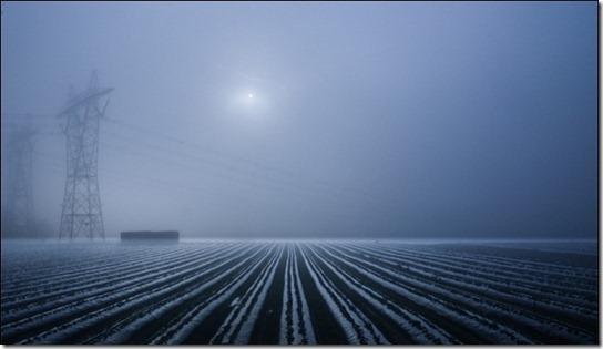 foggy-photography-13