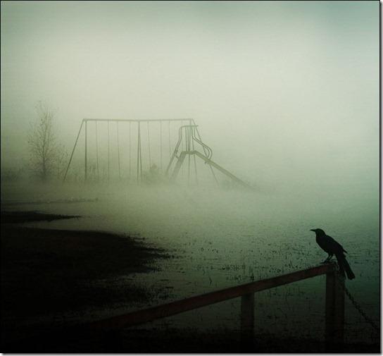 foggy-photography-18