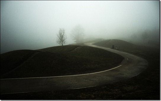 foggy-photography-19