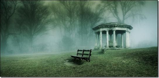 foggy-photography-29