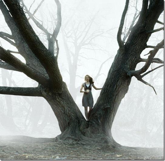 foggy-photography-3