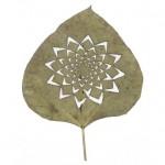 leafartcut_05.jpg
