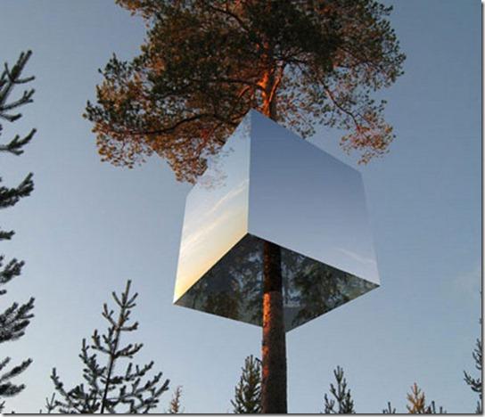 Treehouse-6