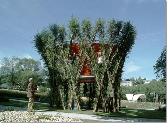 Treehouse-7