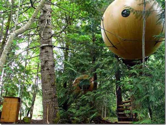 Treehouse-8