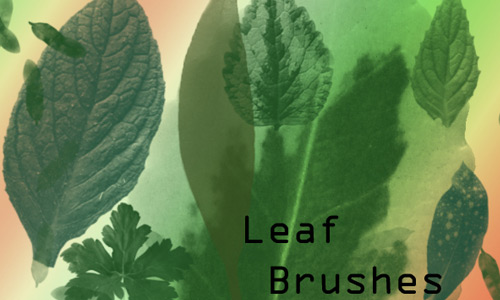 Leaf Brushes