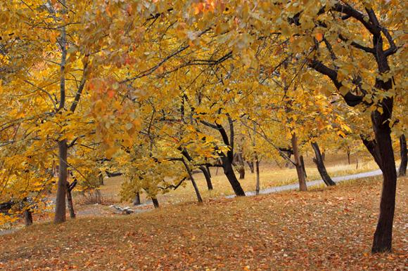 Autumn in Huza