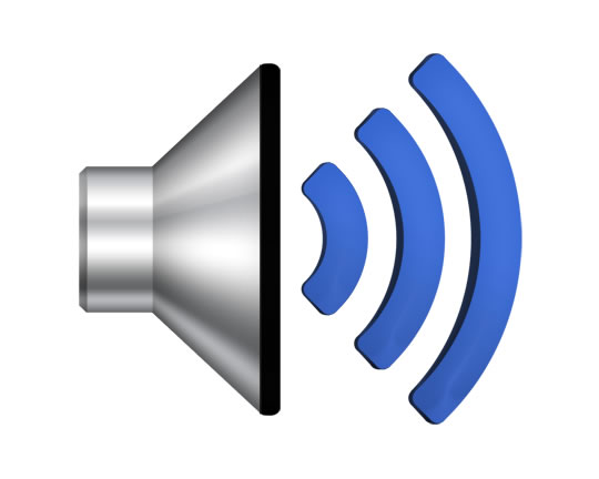 speaker volume button