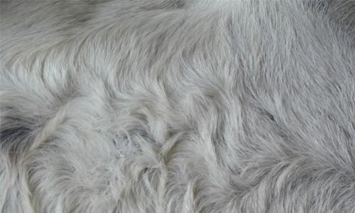 Donkey Fur