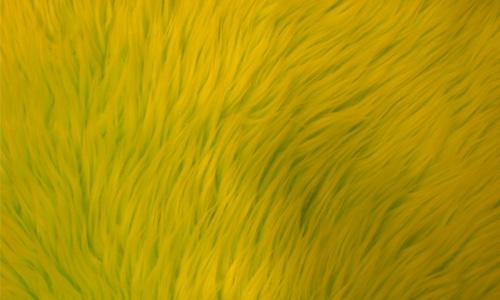 Fur Yellow Coarse