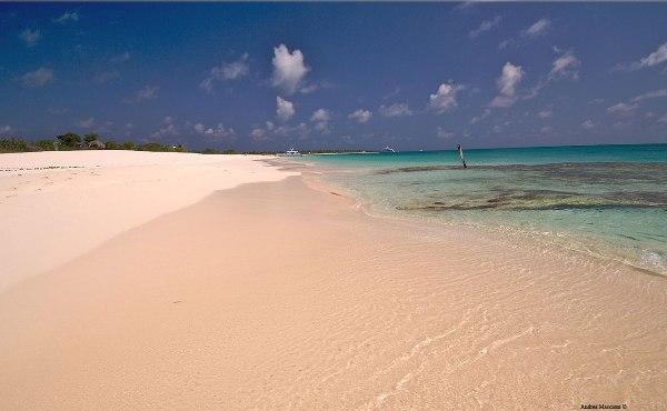 barbuda pink beaches - photo #14