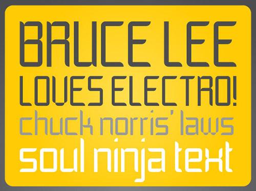 Soul Ninja (Registration Required) font