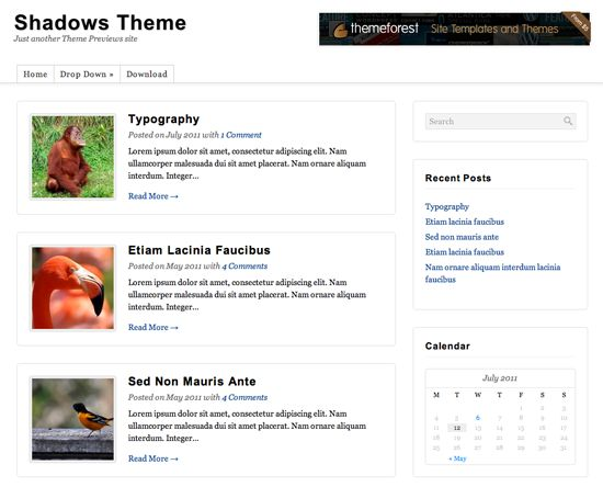 shadows-wordpress-theme