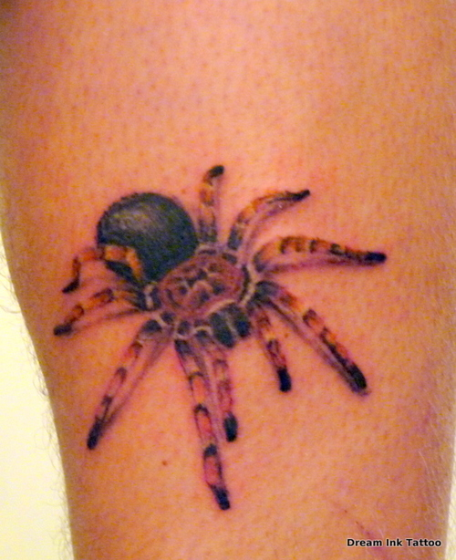 tarantula Tattoos