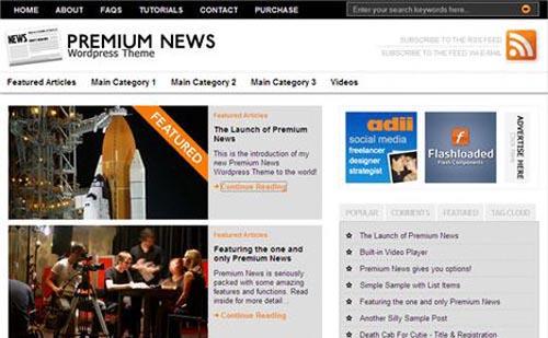 14. Premium News Theme