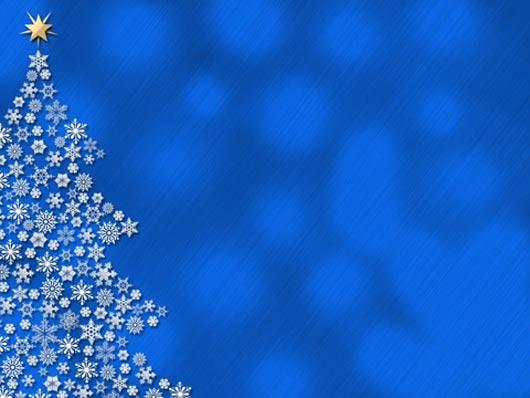 Fresh-Christmas-Tree