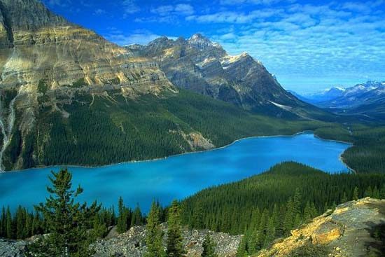 Peyto Lake in Banff National Park, Alberta, Canada