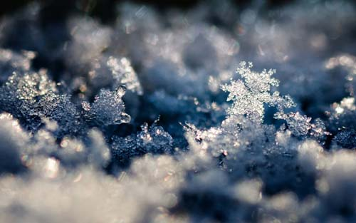 Snow-Crystal-Landscape